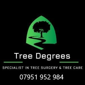 Tree Surgeon Surgeons Croydon, Sutton, Bromley
